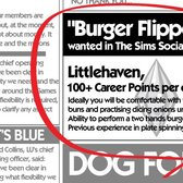 Careers headed for The Sims Social, Burger Flippers need not apply
