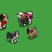 FarmVille Puppy Love Goals: Everything you need to know