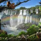 Disney Animal Kingdom Explorers Iguazu Falls: Our guide to finding every item