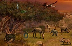 disney animal kingdom explorers cheats elephant plains