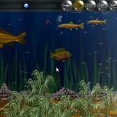 Game of the Day: IA Fish