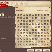 Game of the Day: Word Roundup Challenge