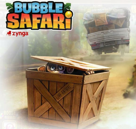 bubble safari tips