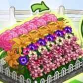 FarmVille Flower Blooms: Everything you need to know