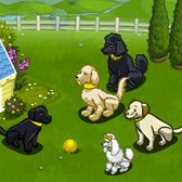 FarmVille Loyal Dogs: Everything you need to know