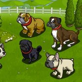 FarmVille Loyal Sturdy Doghouse: Everything you need to know
