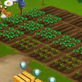FarmVille 2 Cheats &amp; Tips: Plant lengthy crops right before a level-up