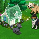 FarmVille Loyal Sporty Doghouse: Everything you need to know