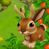 FarmVille 2: Three southwestern recipes add spice to your farm