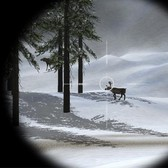 Hit this: Atari's new Deer Hunter Online on Facebook