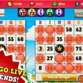 Bingo Hearts iPhone Review