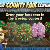 FarmVille County Fairy Treetop Contest Coming Soon
