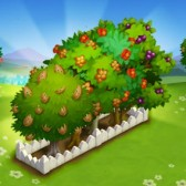FarmVille 2: Retired trees return for a limited time