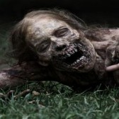 TV to MMO: The Walking Dead