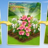 FarmVille 2 Hibiscus Crafting Recipes: Everything you need to know