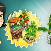 ChefVille Cheats & Tips: Store these items in your Greenhouse