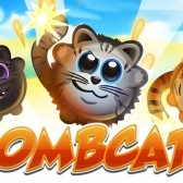 Bombcats cheats and tips