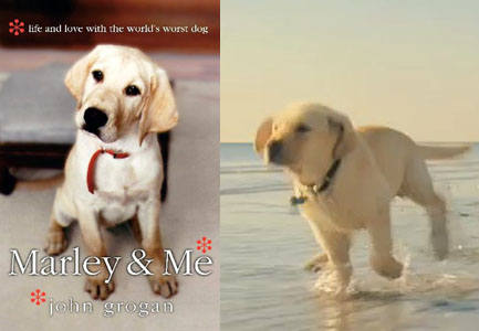marley and me. pages of Marley amp; Me at