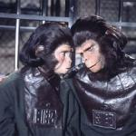 'Escape From the Planet of the Apes'