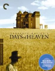 'Days of Heaven'
