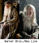 dumbledore and gandalf in 'harry potter' and 'lotr'
