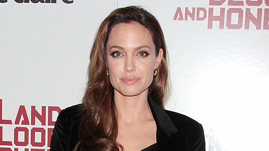 filmscreeninginthelandofbloodandhoneyny.d0d70da5ce0a4d5e91b8a9c413cedb89 Angelina Jolie Responds to In the Land of Blood and Honey Lawsuit