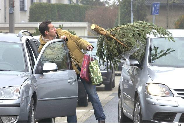 Tannenbaum, Weihnachtsbaum,  Auto, Transport, heimbringen, Tipp, Weihnachtsbaumtransport, regeln, gebot, gesetz, strafe, Flensburg