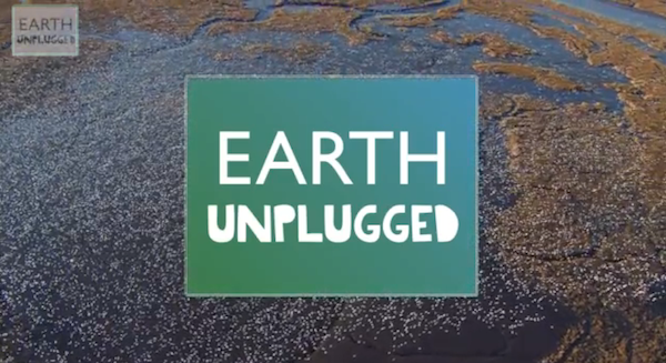 Earth Unplugged: BBC startet Naturkanal auf YouTube (Video)