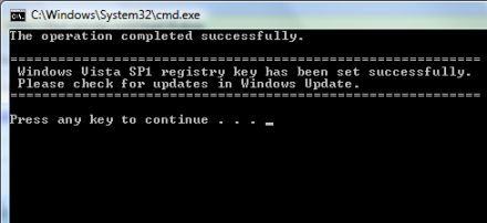 Vista SP1 registry key