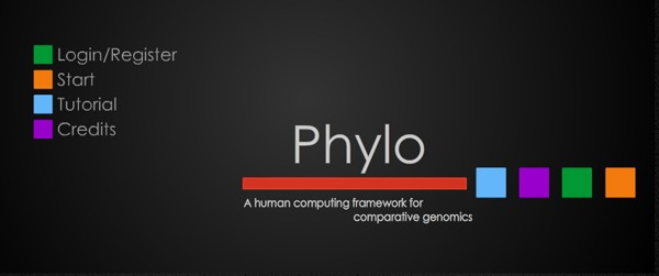 Phylo