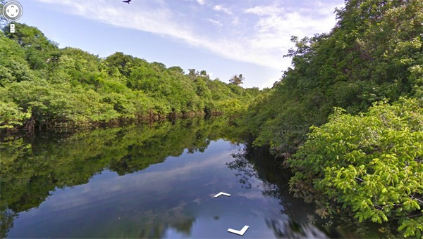 Google Street View te lleva de paseo por el Amazonas