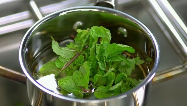 Step 4: Mint Syrup