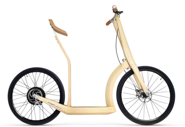 Electric bamboo scooter