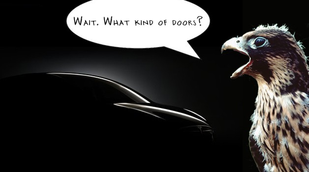 Tesla Model X silhouette with falcon asking,