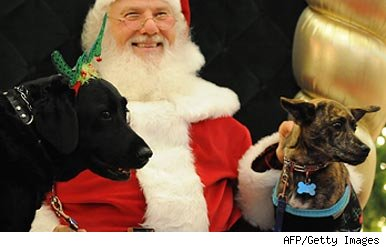 Santa and dogs