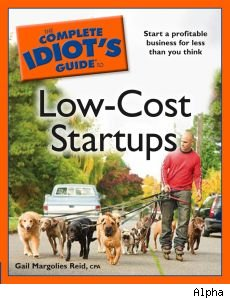 Low-Cost startups book