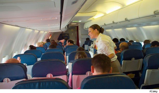career a confessions from flight attendants