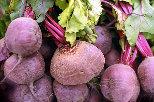 Beetroot Slow Juicer : Latest News