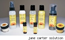 jane carter solution travel kit