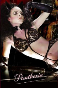 Agent Provocateur's fall 2009 campaign.