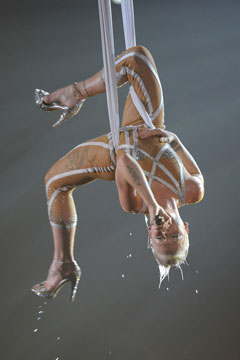 Pink performance grammys 2010 nude unitard hanging upside down wet glitter in the air