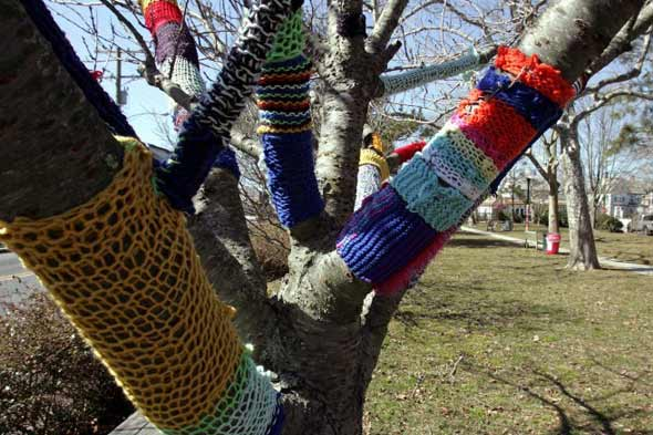 midnight knitter trees cape may new jersey