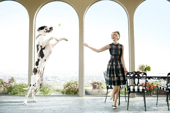 harper's bazaar katherine heigl june 2010 dog dress