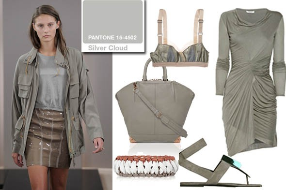 pantone spring 2011 silver cloud color of the week