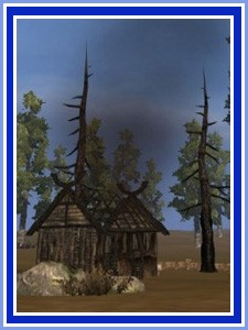 Dawntide - wilderness hut