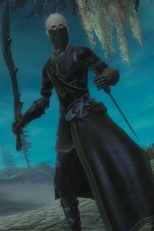 The next beta circus will be Guild Wars 2.  You can see the tents being set up now.