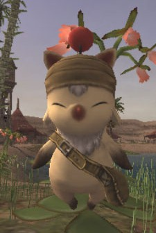 Don't ask me why I'm here, kupo.
