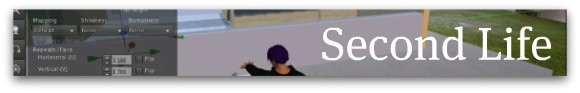 Second Life banner