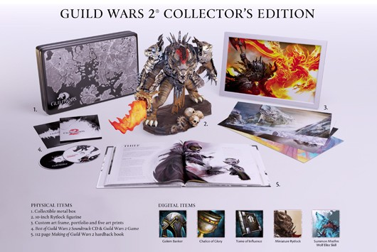Guild Wars 2 CE Details