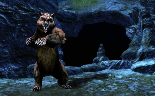 Dungeons and Dragons Online - dire carebear